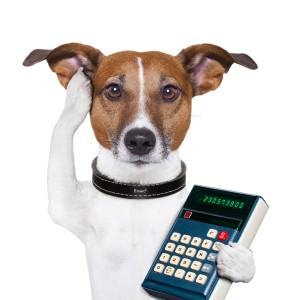 Cheapest dog insurance calculator