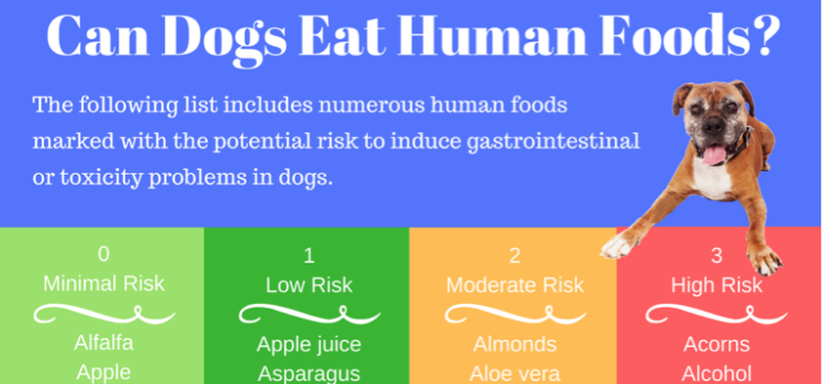 Can Dogs Eat Human Food?