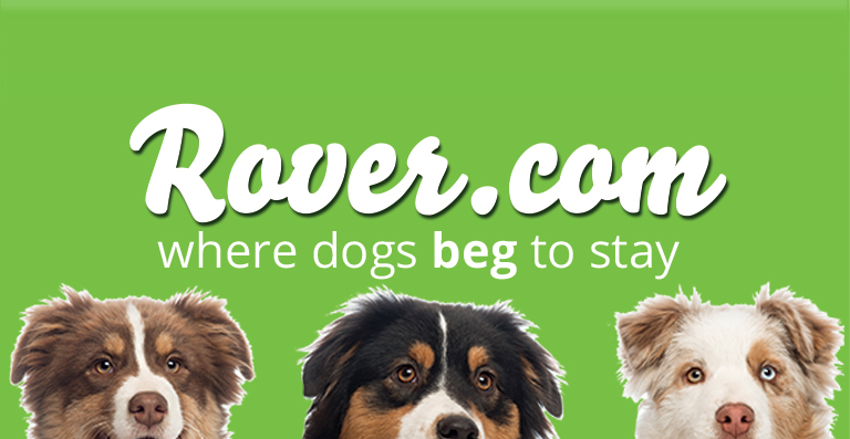 Rover Dog Sitting Review & $20 Promo Code