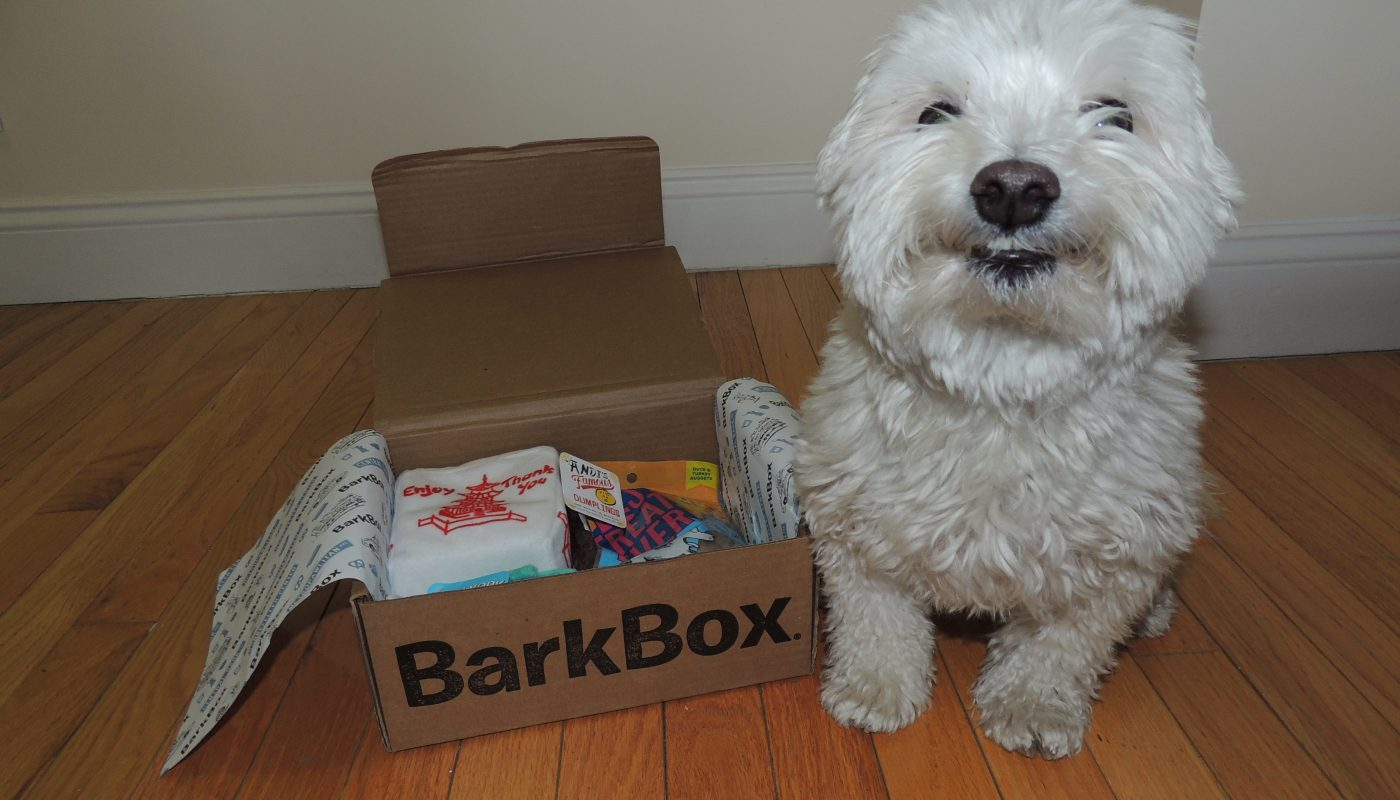 BarkBox Review – Is It the Best Subscription Box?
