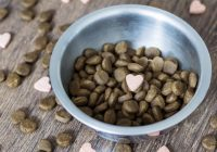 Dog Supplements to Keep Your Dog Healthy
