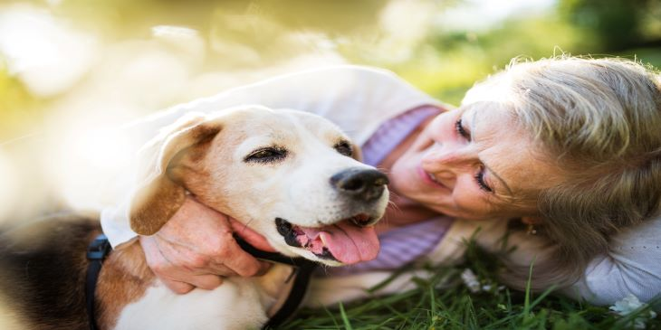 12 Ways to Help Your Dog Live a Longer, Happier Life