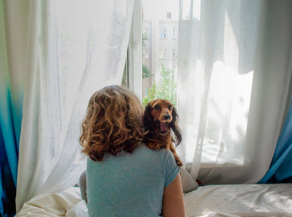 holding long haired dachshund